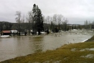 The Salmon River overflowed its bank
